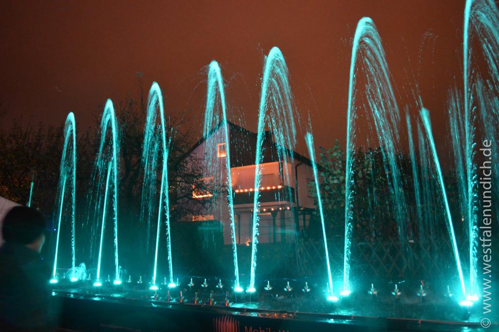 Lichtspiel beim Reineccius-Markt 2013