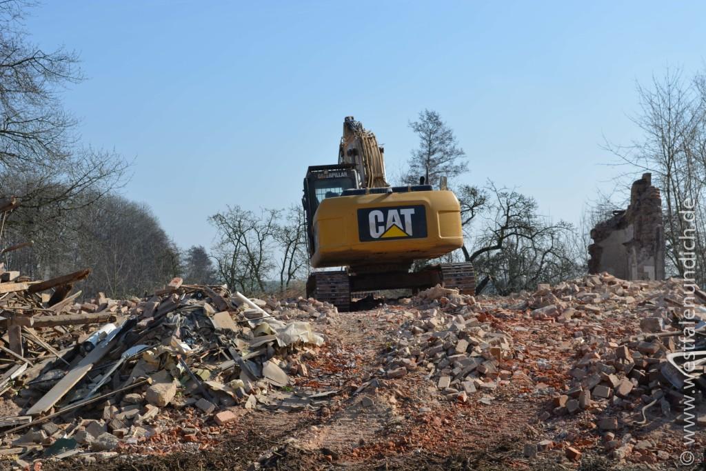 Stadtvilla wird abgerissen - Bild 02
