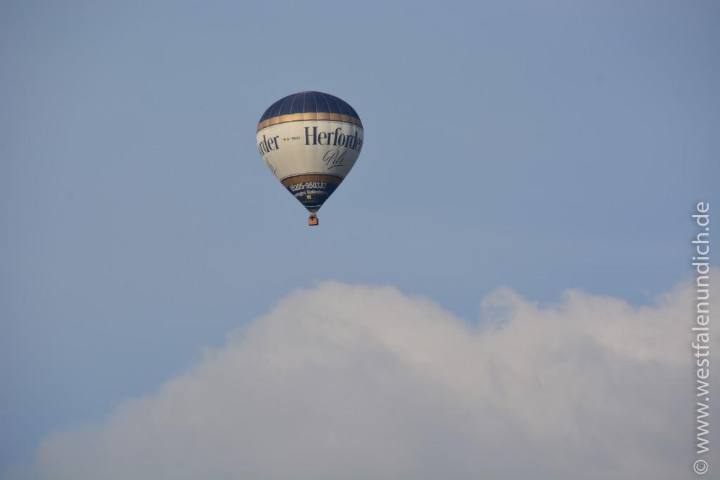 Heißluftballon - Bild 02