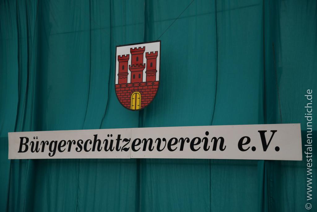 Sonntag - Ersatzbild - Ehrentanz des Königspaares / Kronprinzenpaares