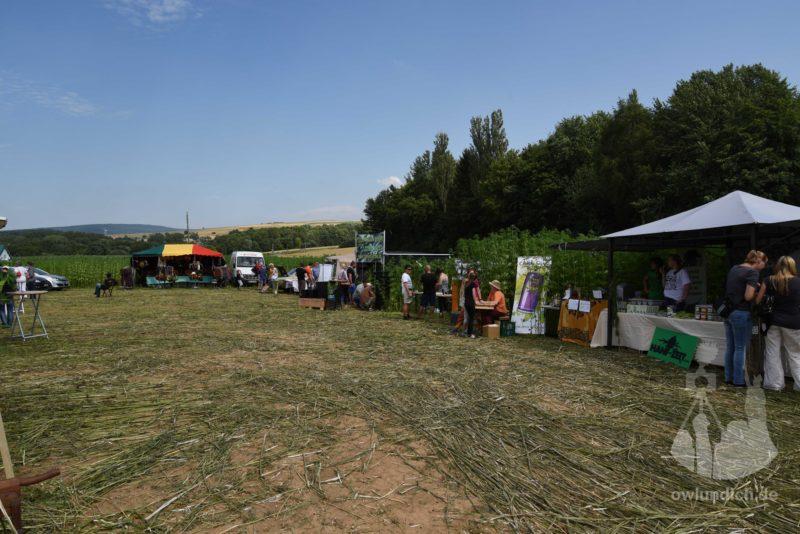 Steinheim - Reggae im Hanf-Feld 2015 - Bild 09