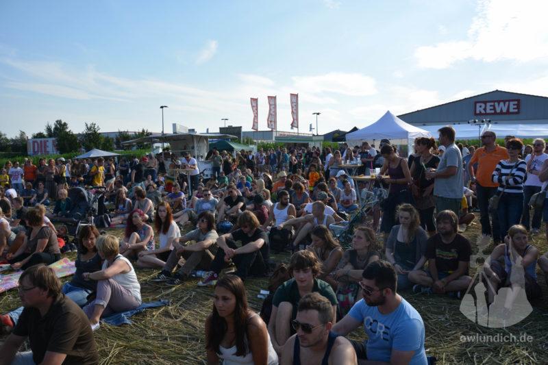 Steinheim - Reggae im Hanf-Feld 2015 - Bild 07