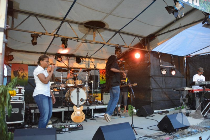 Reggae im Hanf-Feld 2015 - Yah Meek - Bild 04