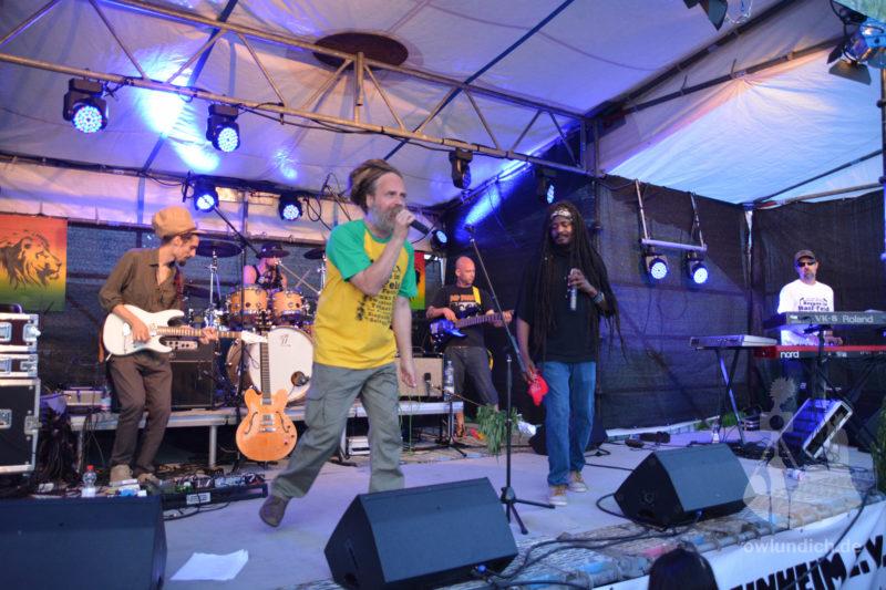 Steinheim - Reggae im Hanf-Feld 2015 - Bild 10