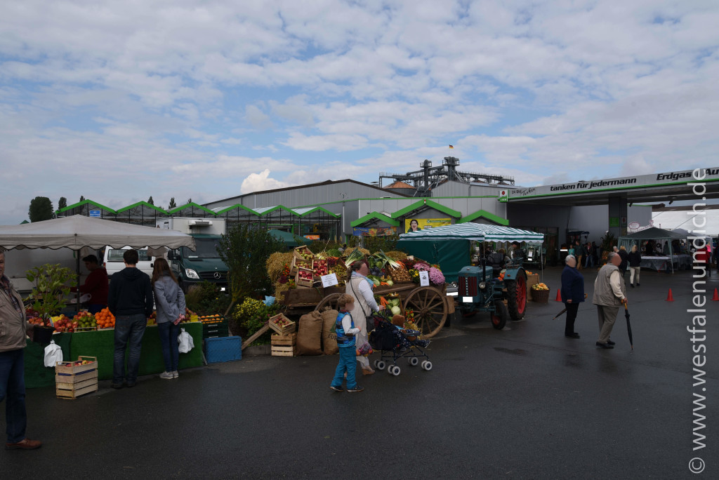 Steinheim - Oktoberfest am Lipper Tor - Bild 02