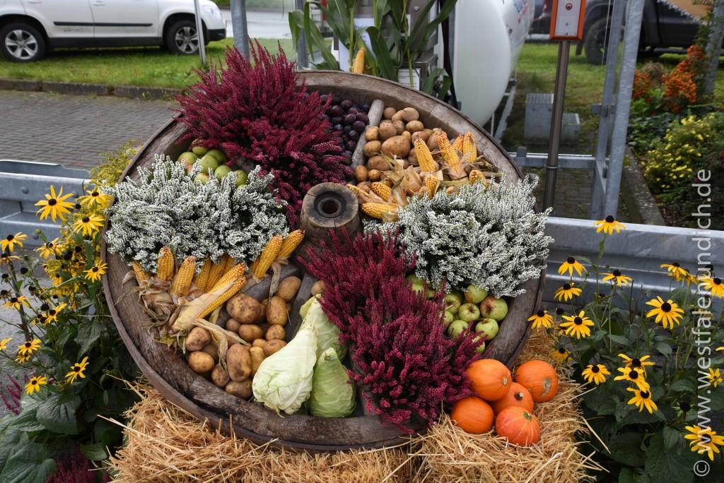 Steinheim - Oktoberfest am Lipper Tor - Bild 05