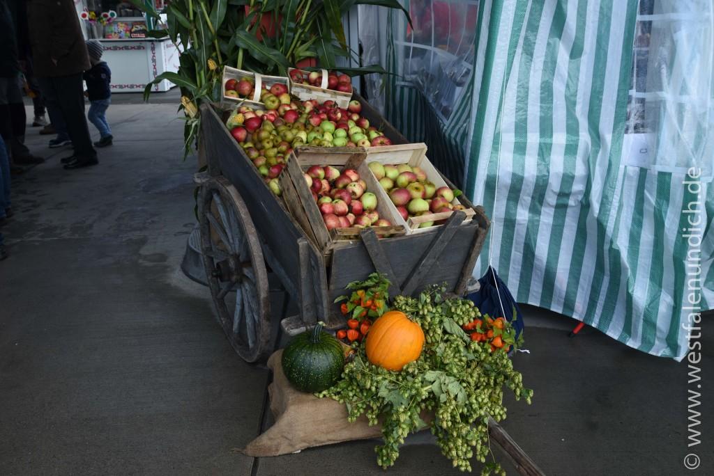 Steinheim - Oktoberfest am Lipper Tor - Bild 06