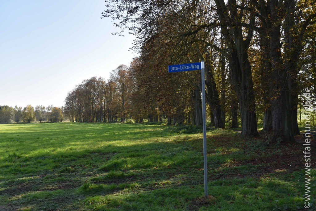 Steinheim - Otto-Lüke-Weg - Bild 03