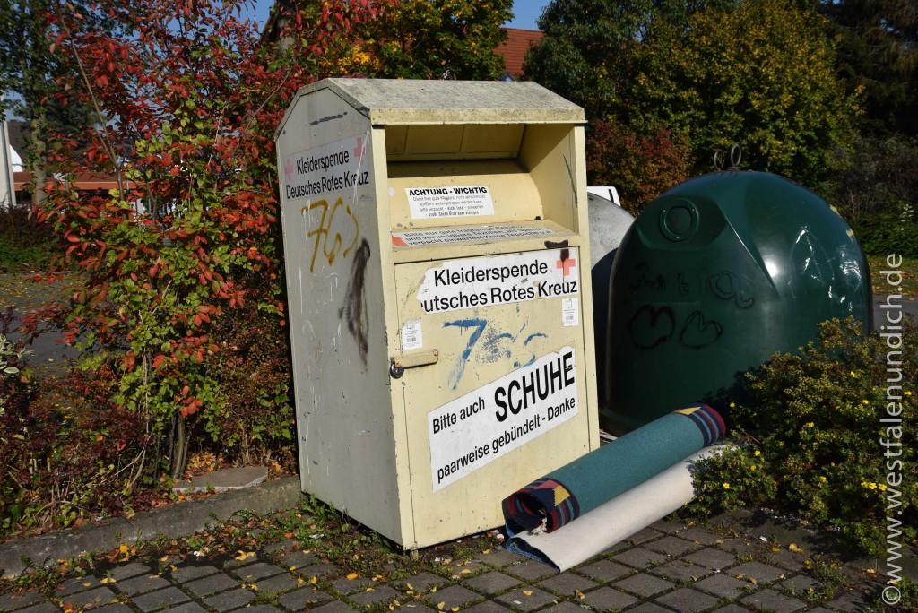 Steinheim - Illegale Müllentsorgung - Bild 01