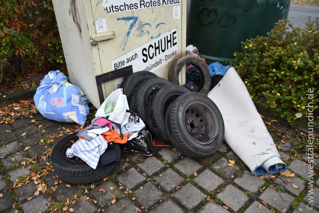 Steinheim - Illegale Müllentsorgung - Bild 04