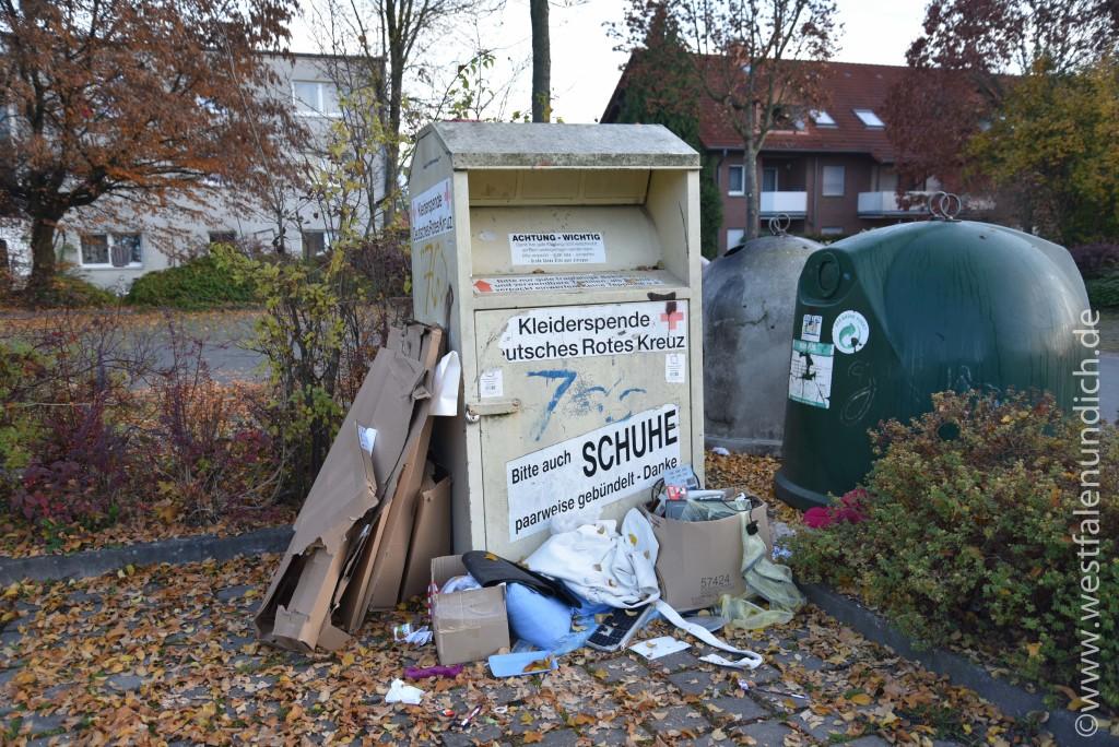 Steinheim - Illegale Müllentsorgung - Bild 02