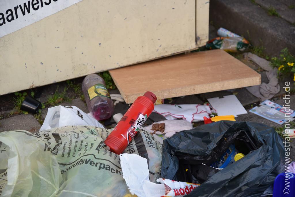 Steinheim - Illegale Müllentsorgung - Bild 03