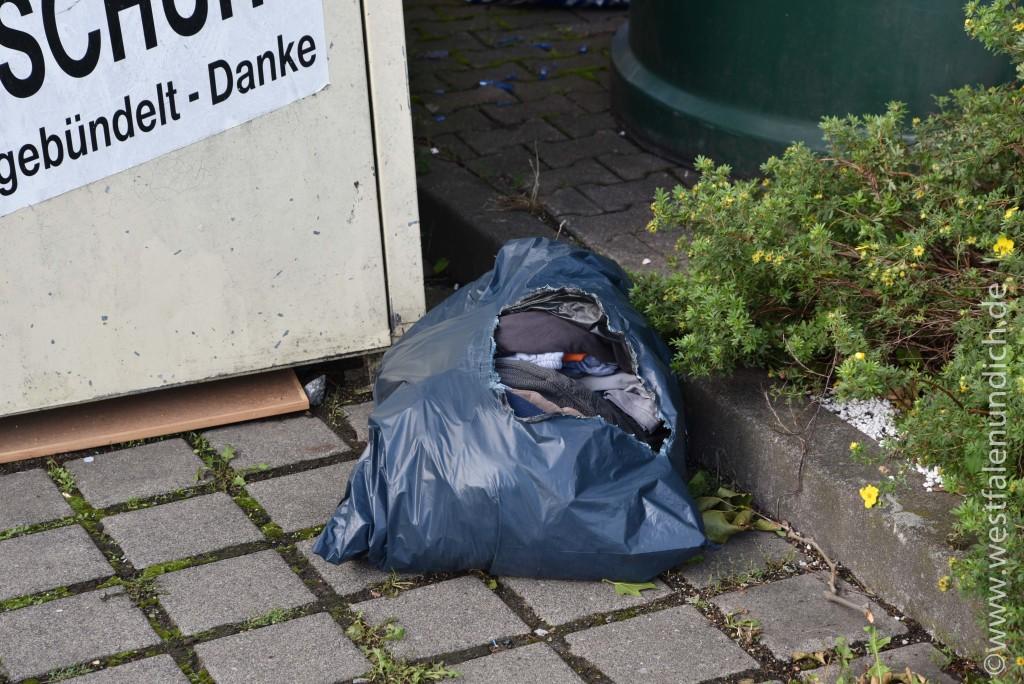 Steinheim - Illegale Müllentsorgung - Bild 05