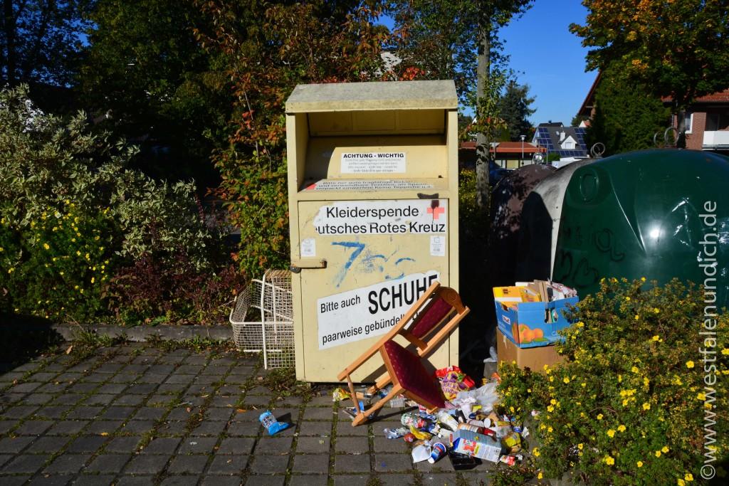 Steinheim - Illegale Müllentsorgung - Bild 11