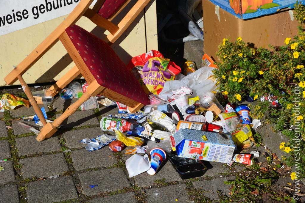 Steinheim - Illegale Müllentsorgung - Bild 12