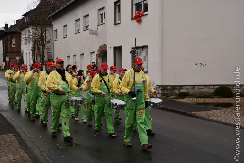Steinheim - Rosenmontagsumzug 2016 - Fußtruppen und Musikkapellen Bild 01