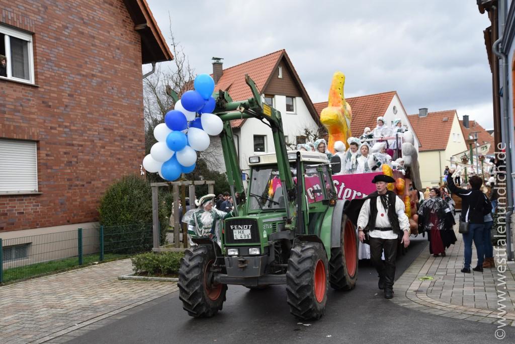 Rosenmontag 2016 – Steinheim - W10 - Prinzensterne - Bild 01