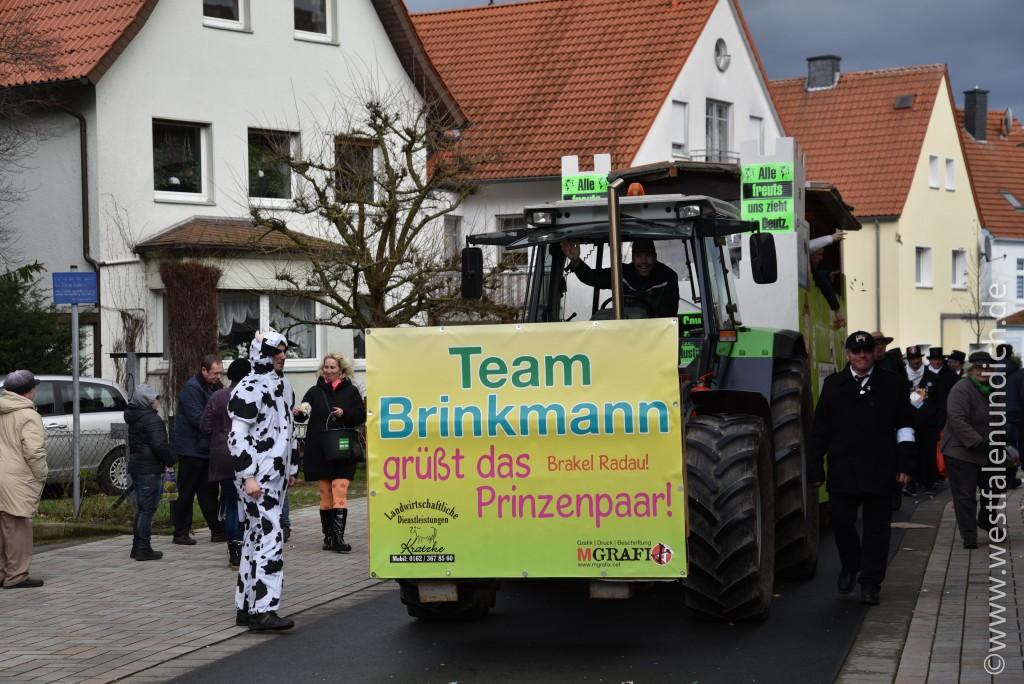 Rosenmontag 2016 – Steinheim - W20 - Crazy Cows for fair milk Team Brinkmann Brakel - Bild 03