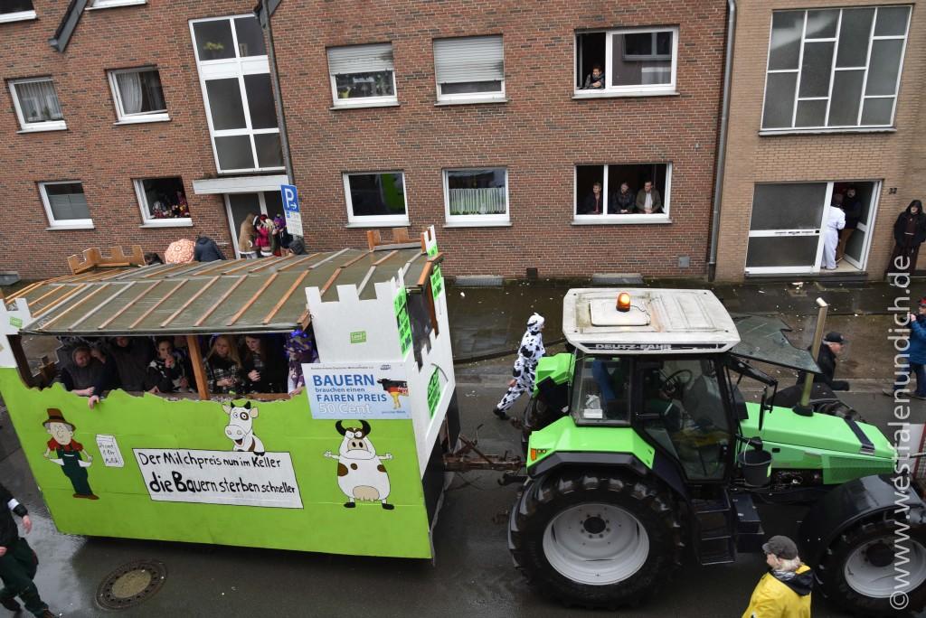 Rosenmontag 2016 – Steinheim - W20 - Crazy Cows for fair milk Team Brinkmann Brakel - Bild 02