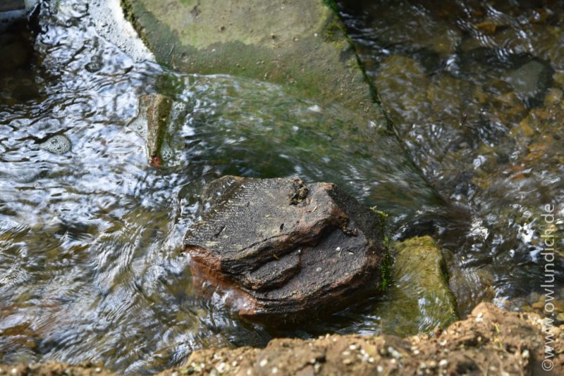 Grabsteinfragmente in der Nähe des Heubachs/Emmer - Bild 01