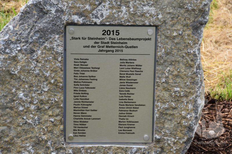 Das Lebensbaumprojekt - Lebensbäume für Neugeborene 2015 - Bild 01