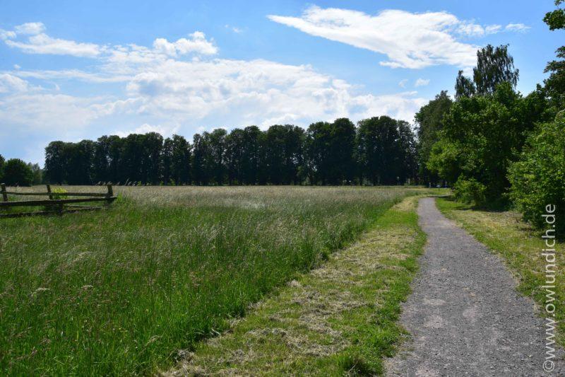 Landschaftspark Emmerauen - Bild 02