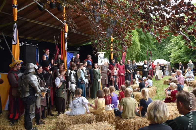 Mittelalter-Markt - Tonenburg 701 Jahre - Bild 18