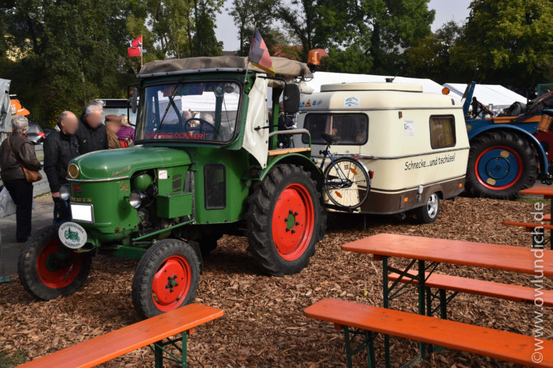 Bad Meinberg - Bauernmarkt 2016 - Bild 09