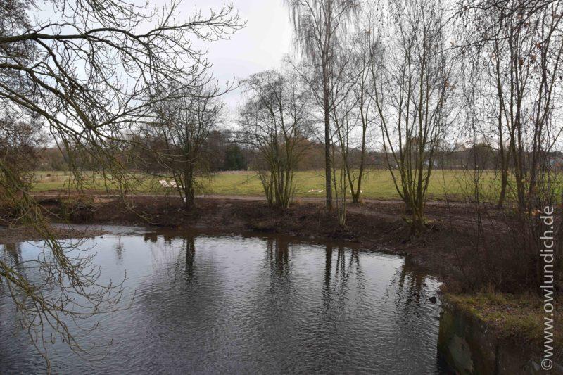 Steinheim - Landschaftspark Emmerauen wird ausgebaut - Bild 07